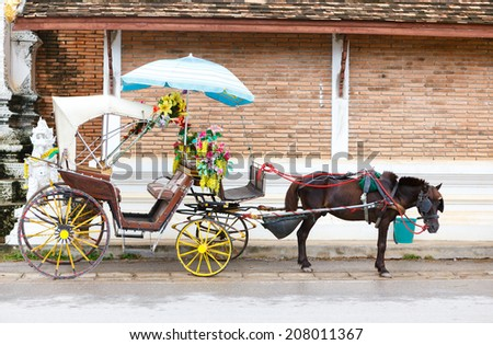 A Carriage with black horse  - stock photo