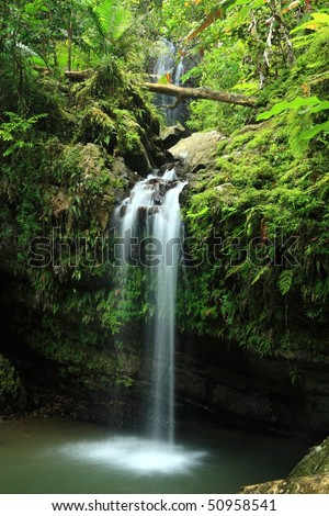 A cascade falling into a swimming hole on Cascada Juan Diego in the El Yunque rainforest in the Caribbean National Forest, Puerto Rico - stock photo