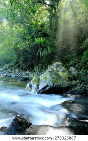 A cascading stream in a mysterious forest with sunlight shining through the lavish greenery ~ Beautiful scenery of nature in Taiwan - stock photo