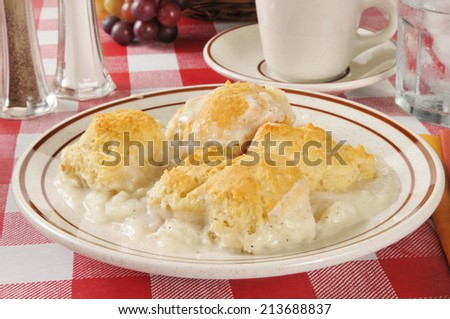 A casserole with white meat chicken, mashed potatoes and biscuits - stock photo
