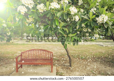 a chair with flower in garden , vintage style picture - stock photo