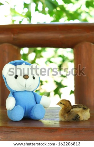 A chick with a white bear doll - stock photo