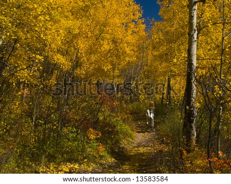 A child stops to view with awe the vibrant beauty of the woods in autumn. - stock photo