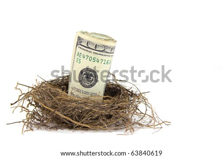 A close up of a roll of hundred dollar bills in a birds nest on a white background - stock photo