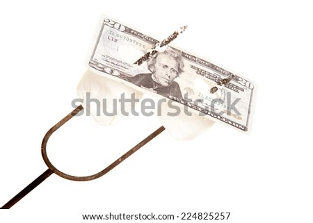 A close up of a twenty dollars on a roasting stick with marshmallows. - stock photo