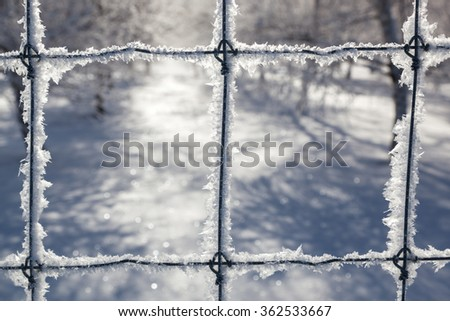 A close up of delicate ice crystals growing on a fence in winter with a blurred background. - stock photo