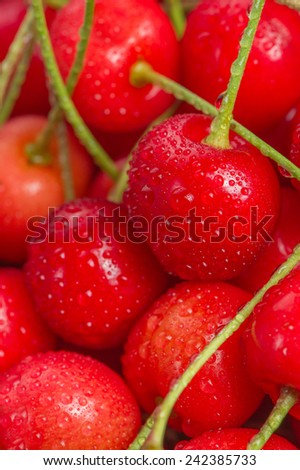 A close-up of ripe red cherries with water drops - stock photo