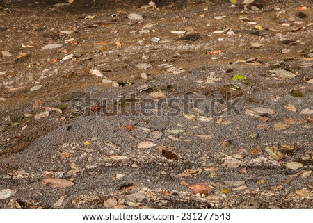 A close up of the surface of pollution on water. - stock photo