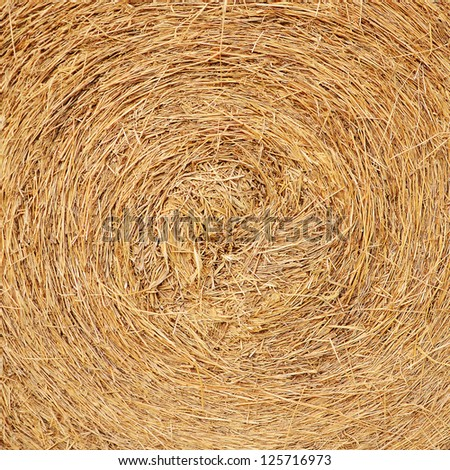 A close-up shot of a large bail of hay - stock photo