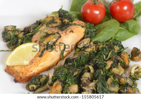 A closeup image of a dinner plate with with grilled salmon with seafood and spinach. Image taken on white background with garnish of fresh vegetables. - stock photo