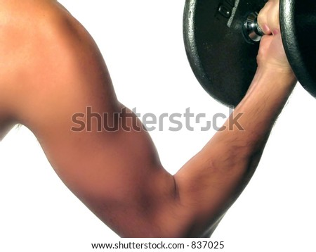 A closeup of a man's arm doing bicep curls. (excercise) - stock photo