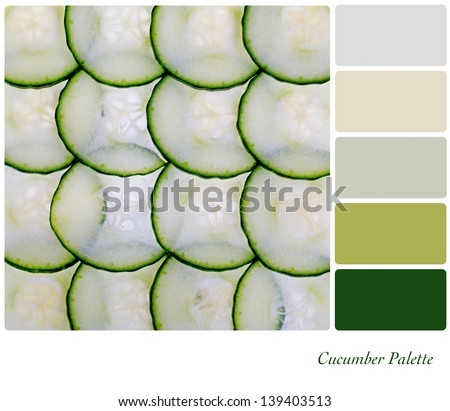 A closeup of a sliced cucumber in a colour palette with complimentary colour swatches - stock photo