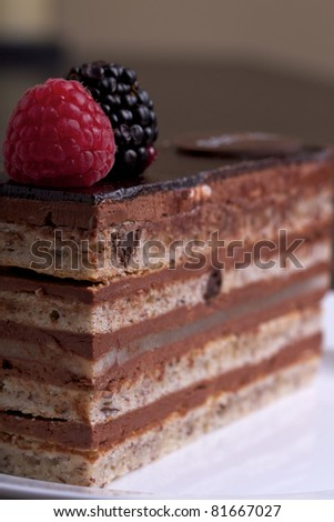 A closeup shot of a slice of chocolate cake topped with a raspberry and blackberry on a white plate. - stock photo