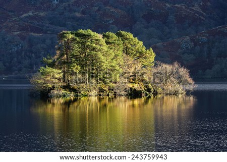 A clump of trees bathed in the morning winter Sun from the shore of Loch Lomond, Scotland. - stock photo