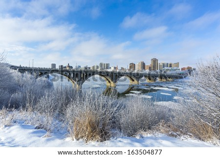 A cold but sunny day in Saskatoon, Canada with the hoarfrost on the trees. - stock photo