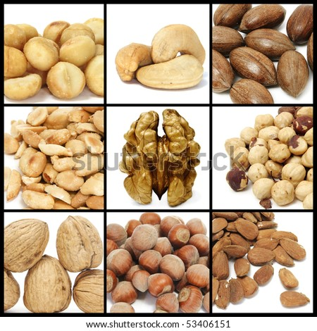 a collage of nine pictures of different nuts - stock photo