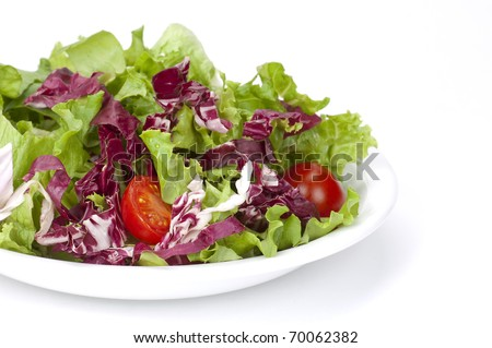 a colorful nutritious salad in a white plate - stock photo