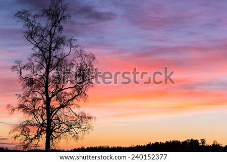 A colorful sky at sunrise with a tree in the foreground - stock photo