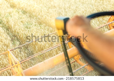 A combine harvesting wheat in a field - stock photo