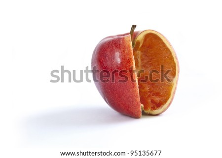 A comparison of apples and oranges when the fruit has a bit of both. Photo Manipulation showing an apple on white with a wedge cut out and the flesh of an orange inside. - stock photo