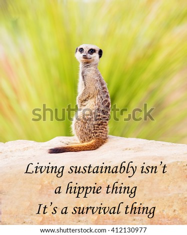 A concept picture of a meerkat making the point that sustainable living is so important that it is a question of survival of the planet, its not simply a fad of passing phase - stock photo