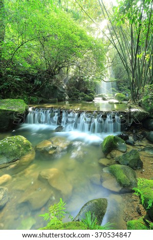 A cool refreshing waterfall hidden in a mysterious forest of lush greenery ~ Beautiful river scenery of Taiwan in springtime (Vertical Version) - stock photo