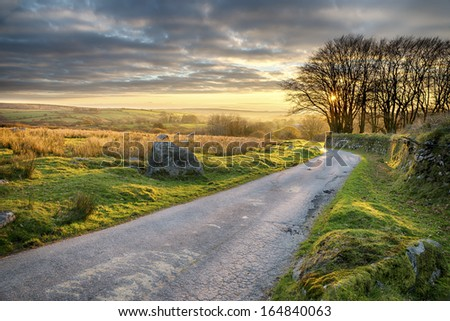 A country lane leading through Bodmin Moor in Cornwall - stock photo