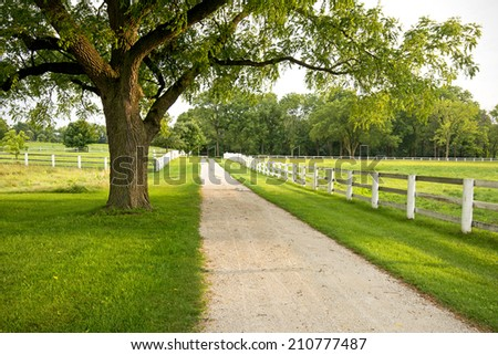 A country lane that runs through the Equestrian Center of Danada Forest Preserve in DuPage County, Illinois. - stock photo