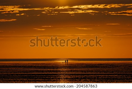 A couple with their dog taking a tideland-walk at sunset  - stock photo