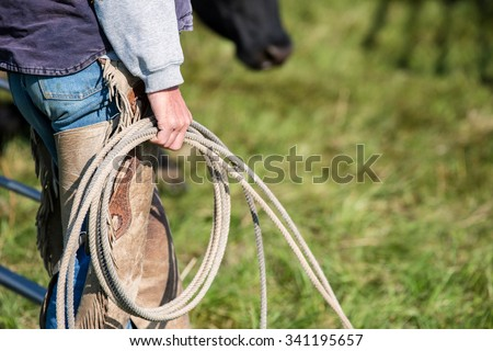 A cowboy holding a rope and lasso while sorting cattle on a ranch. - stock photo