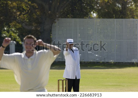 A cricketer celebrating the umpires decision during a cricket match - stock photo