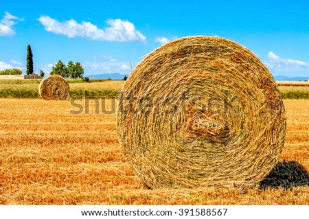 a crop field in Spain with some large round straw bales after harvesting - stock photo