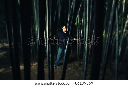 A cross process photo of a man standing in a bamboo forest - stock photo