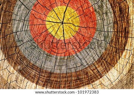 A cross section of a tree with grungy looking target painted on it. - stock photo