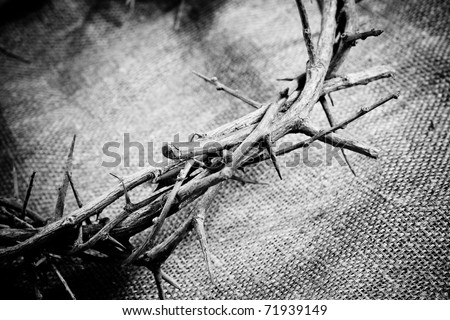 a crown of thorns on fabric background - stock photo