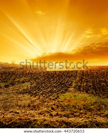 a cultivated field over sunset. - stock photo