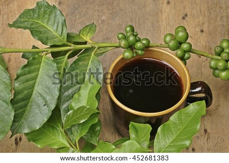 A cup of coffee with coffee tree on wood background - stock photo