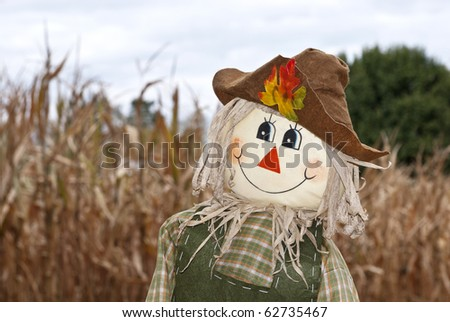A cute Autumn scarecrow in the corn field, horizontal with shallow depth of field - stock photo