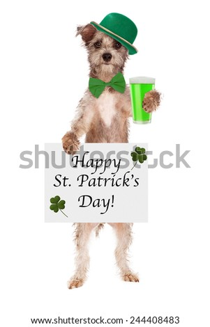 A cute little dog wearing a green hat and tie holding a green beer and Happy St. Patrick's Day sign - stock photo