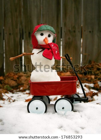 a cute miniature snowman in a red wagon  - stock photo