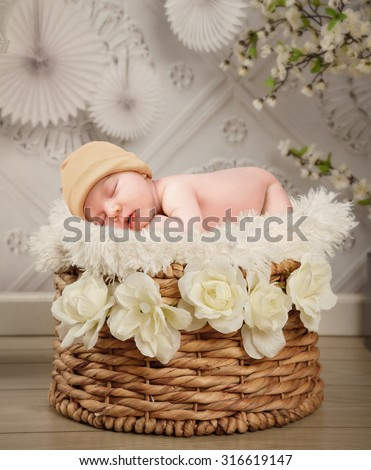 A cute newborn baby is sleeping in a basket with white flowers and a texture wall background for a photography portrait or love concept. - stock photo