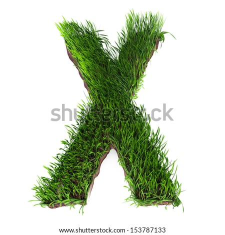 A 3D rendering of an upper case X in grass - stock photo