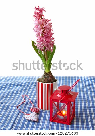 A decorative composition with burning lantern and pink hyacinth on white background - stock photo