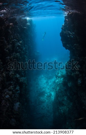 A deep crevice has been eroded in a coral reef in the Solomon Islands. Erosion is continually occurring on reefs while at the same time corals are laying down new limestone. - stock photo