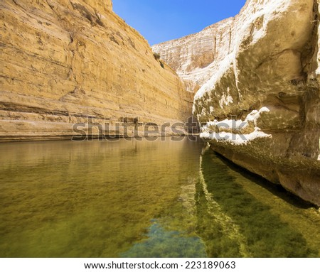 a deep gorge in the Negev desert with a natural water source - stock photo