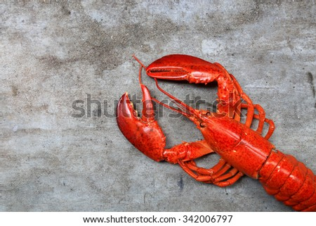 A delicious freshly steamed lobster - stock photo