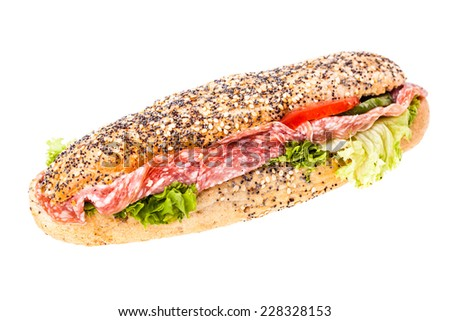 a delicious salami sub sandwich isolated over a white background - stock photo