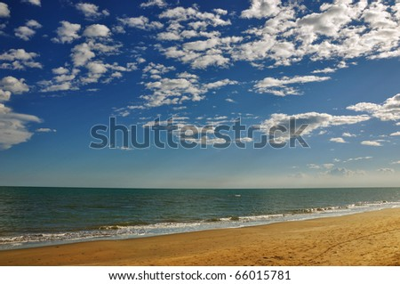 A desert beach - stock photo