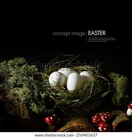 A different style of concept image for Easter. Creatively lit dark and moody forest floor with logs, toadstools and a hidden grass nest with white speckled eggs. Copy space. - stock photo