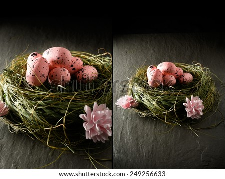 A different style of concept image for Easter. Dual images of pink speckled bird eggs in a grass nest against a dark background. Copy space. - stock photo